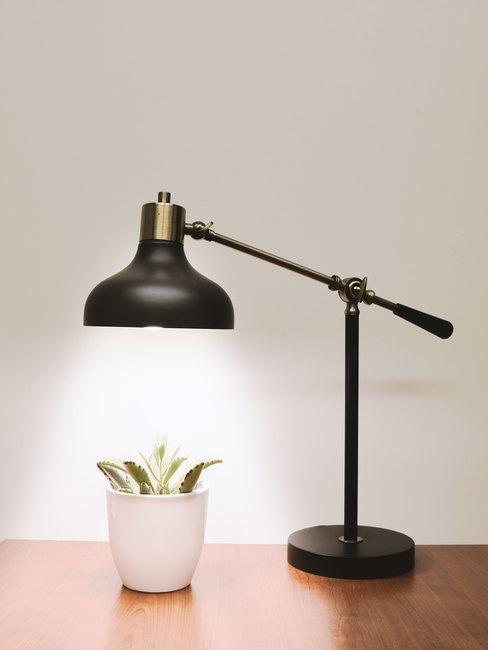 Zwarte tafellamp op een houten tafel en een plant in een pot