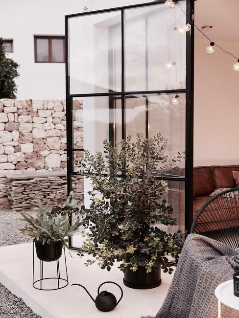 Rośliny stojące na balkonie w czarnych doniczkach