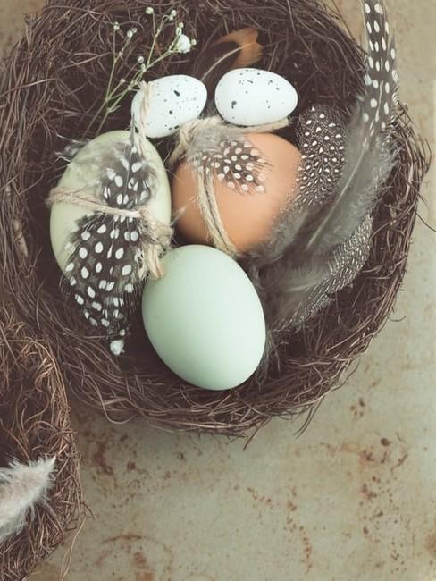 Gniazdko z jajkami i ozdobnymi piórkami jako dekoracja wielkanocna