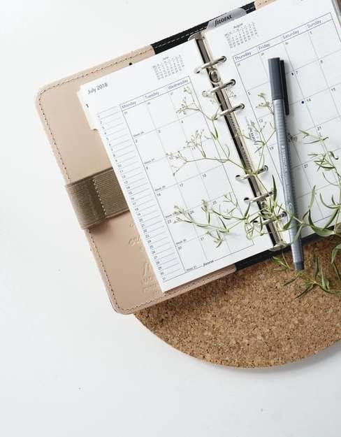 Otarty kalendarz z długopisem oraz rośliną, leżącą na podkładce