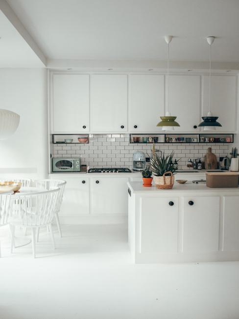 Biała kuchnia z egzotycznymi roślinami w domu Travelicious