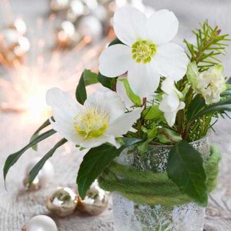 Winterliche Blumenarrangements