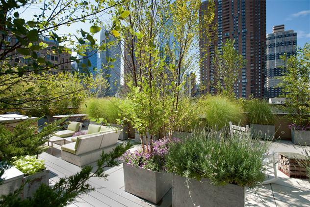 Los jardines de las azoteas de Nueva York