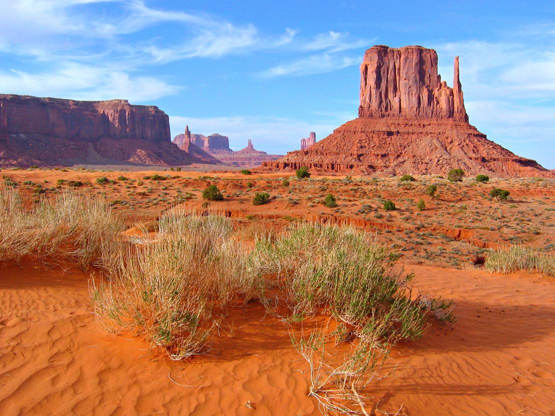 westwing-arizona-dream-intro