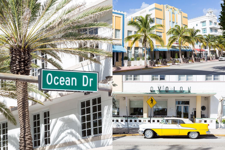 Dalani, Art Basel, Style, Miami, Moda, Arte, Design