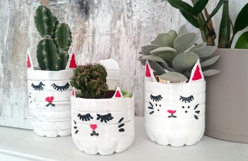 DIY Plantenbak met kattengezicht