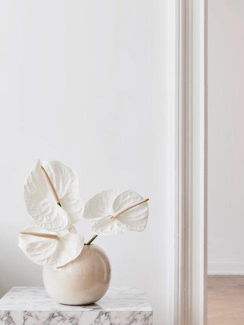 Cremefarbene Kugelvase auf Marmorbeistelltisch vor weißer Wand mit weißen Blumen