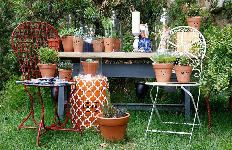 De cactus & vetplanten verzorgingsgids