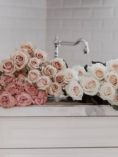 Helle Rosen auf Ablagefläche
