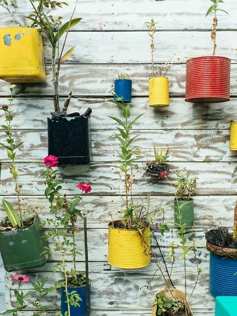 Upcycling von Blechdosen als bunte Übertöpfe an der Wand
