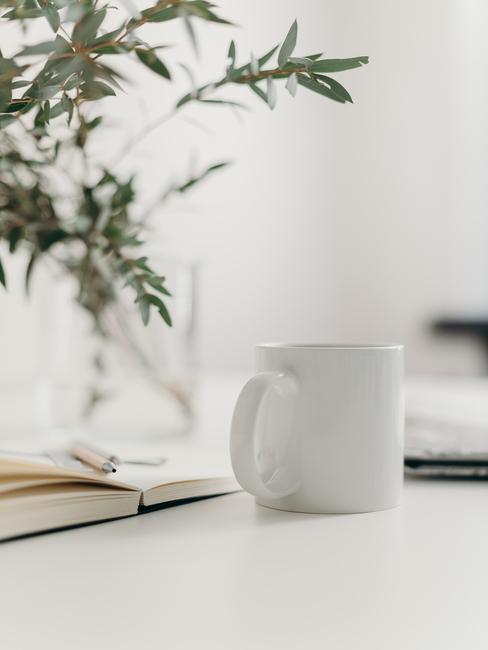 Feng shui planten: Witte mok op een witte tafel naast een groene plant