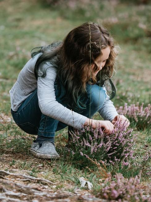 Dziewczynka zrywająca wrzos w ogrodzie