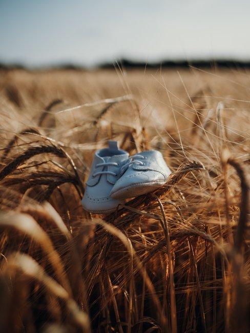 Baby schoenen in maisveld