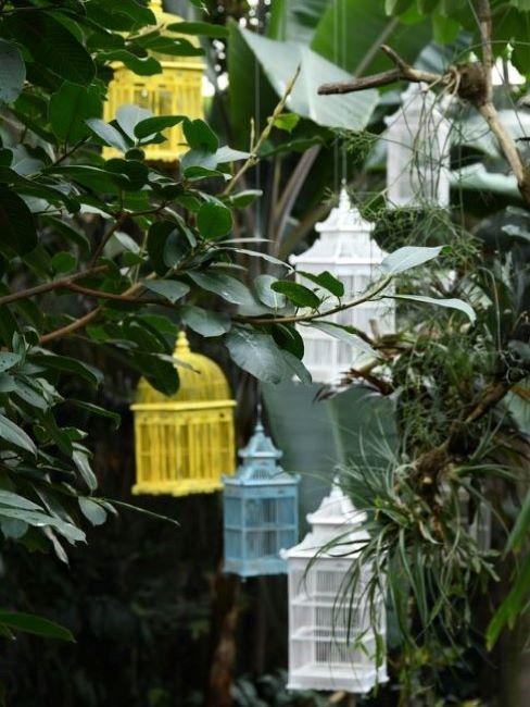 gabbie colorate sugli alberi