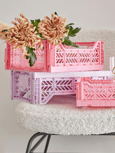 Cassette della frutta rosa e lilla