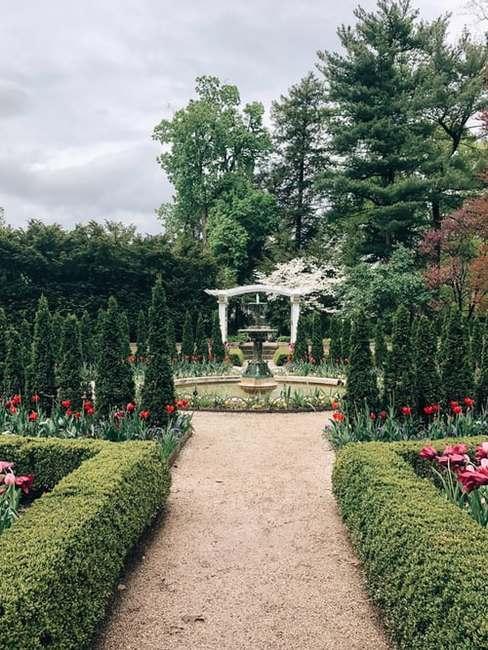 Ogród w stylu franuskim