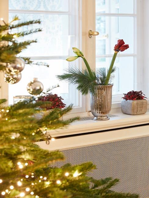 Das Fensterbrett von Tamara Gräfin von Nayhauß mit weihnachtlicher Deko, davor ein Weihnachtsbaum