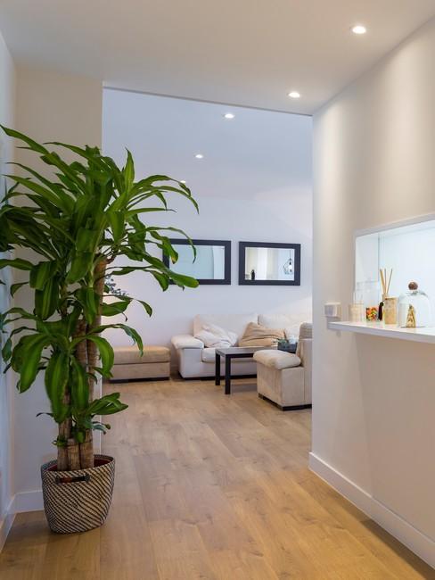 Recibidor abierto con sofás en color blanco y plantas