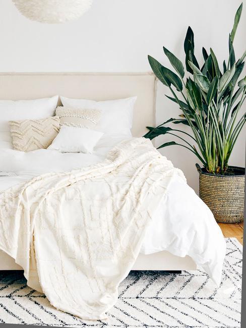 Cremekleurig beddengoed in de slaapkamer in boho-stijl met een levende plant in een pot