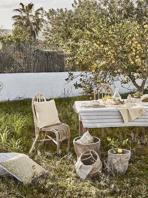 Achtertuin met gras en grote fruitboom met houten tafel en loungestoel