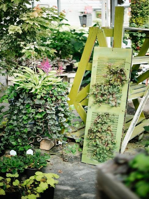Tropische tuin met bloemen en kruiden