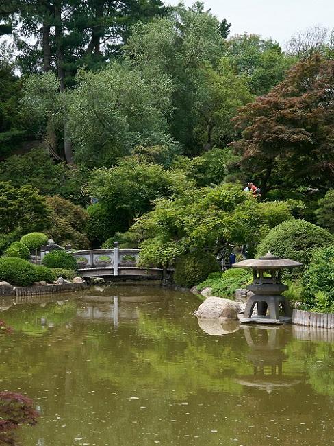 Japanse tuin met vijver en bomen
