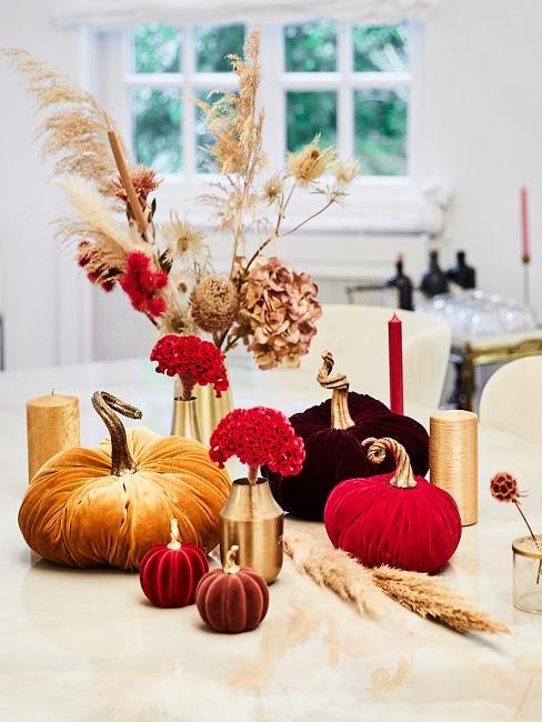 Decorazioni autunnali con zucche e fiori dai colori caldi