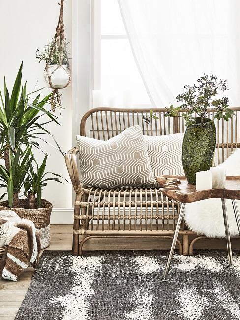 Wohnzimmer Pflanzen im Zimmer in Bast Design