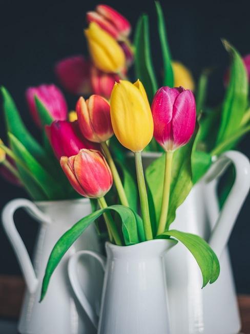 Bunter Tulpenbund in weißen Krügen