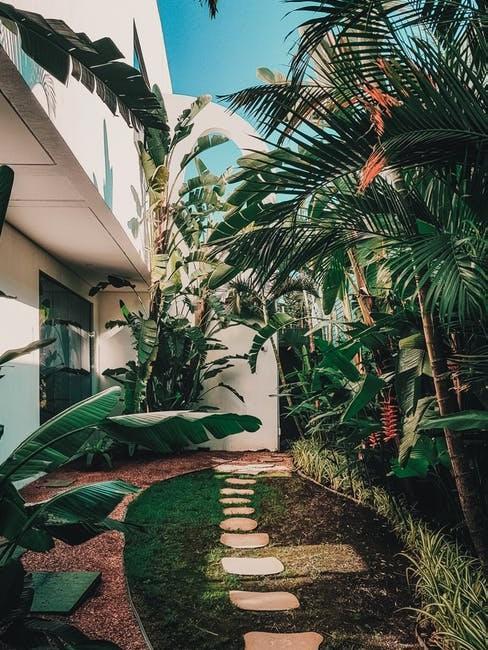 Jardín, vacaciones en casa durante la cuarentena