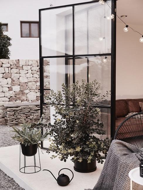 balkonplanten voor openslaande tuindeur op betonvloer