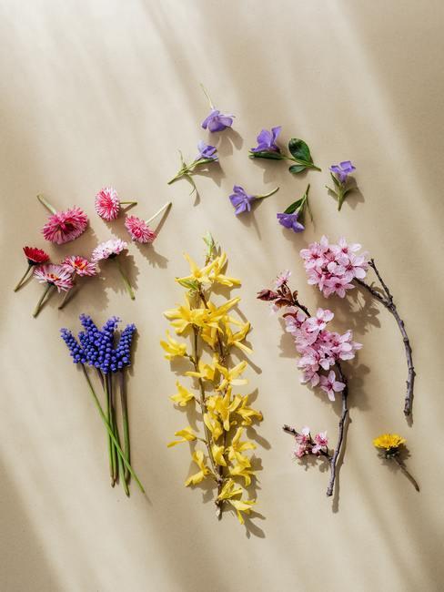 Vers geplukte bloemen voor een boho-stijl slinger