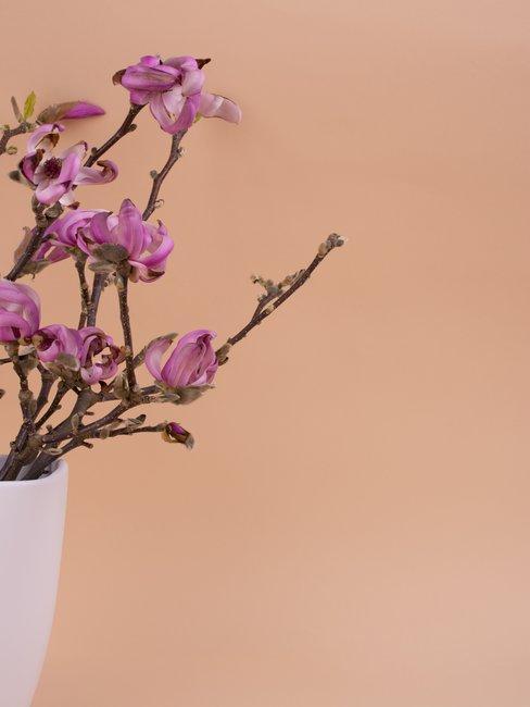 Paarse bloem in witte vaas tegen oranje achtergrond
