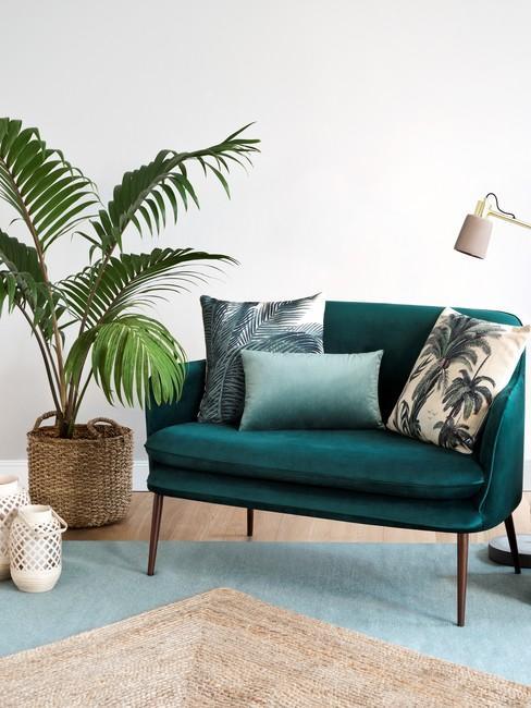 Witte muur met smaragdgroen bankje naast grote groene plant in rieten plantenpot