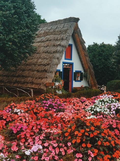 Natuurhuisje met rieten dak en roze en witte bloemen op de voorgrond