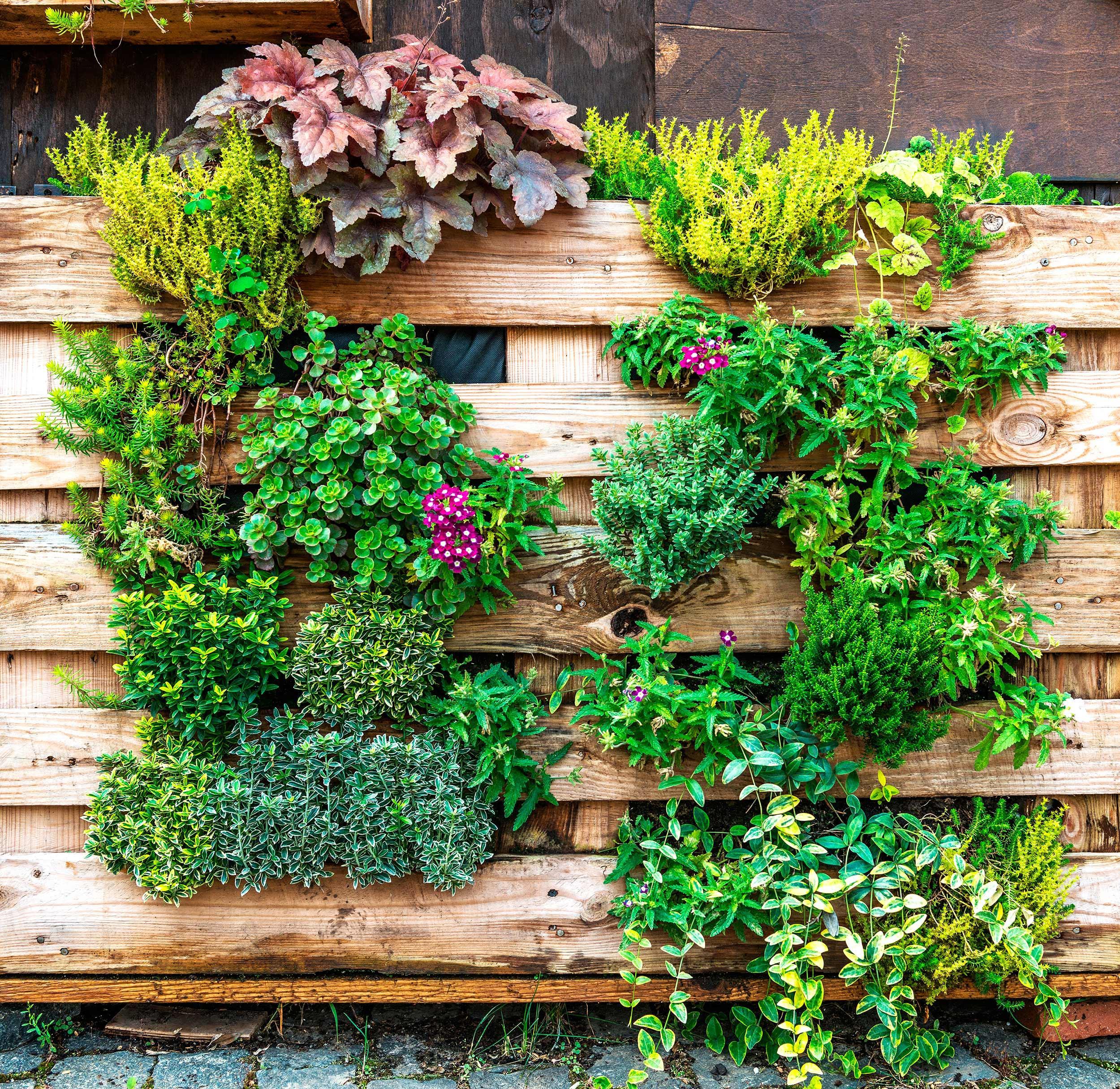 9.jardín-vertical_10-piezas-clave-que-tu-terraza-está-pidiendo_WESTWING-MAGAZINE