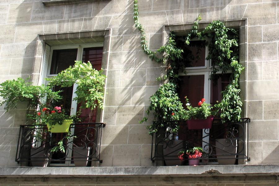 Due romantiche finestre che si affacciano sulle poetiche strade di Marais