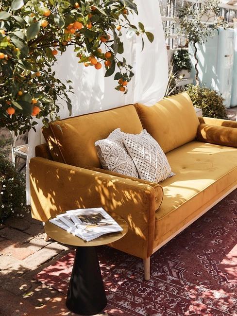 jadín con un sofa mostaza y un naranjo