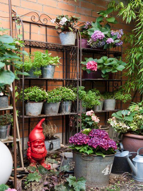 Étagères avec pots de fleurs contre mur extérieur
