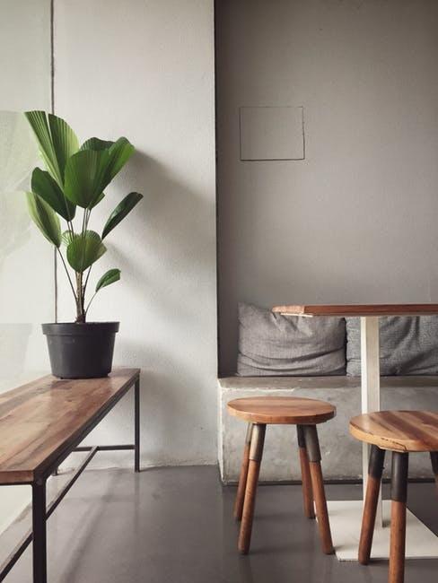 Casa ecosostenibile con sgabelli in legno e pianta