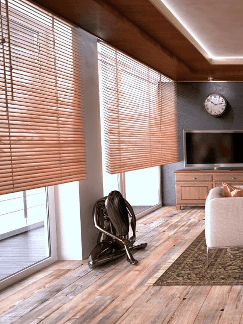 žaluzie-do-obývacího-pokoje-2