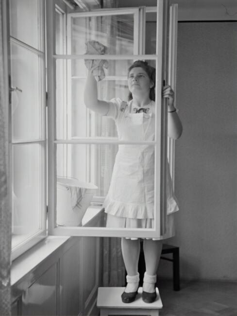 čištění oken 33