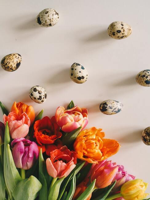 Velikonoční přání květiny