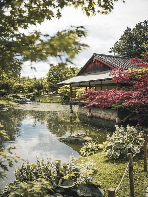 Japonská zahrada s jezírkem a domem