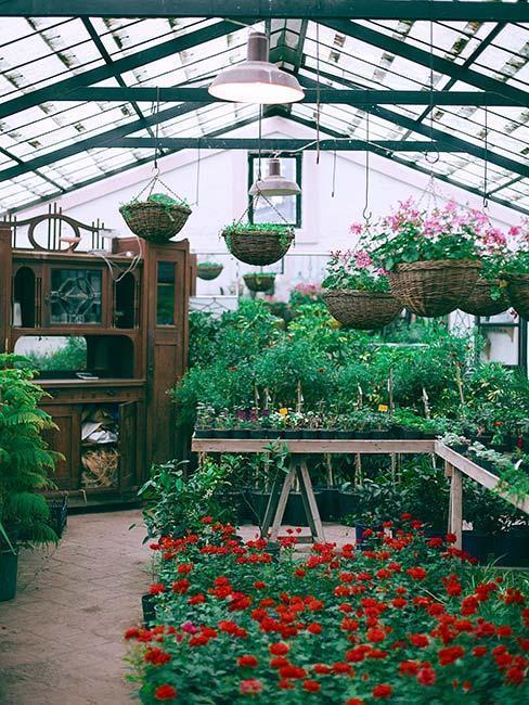zahradní skleník 1