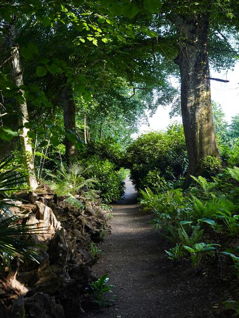 Zahradni cesta