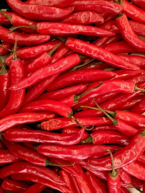 zralé chilli