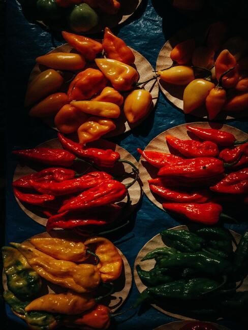 různé odrůdy chilli