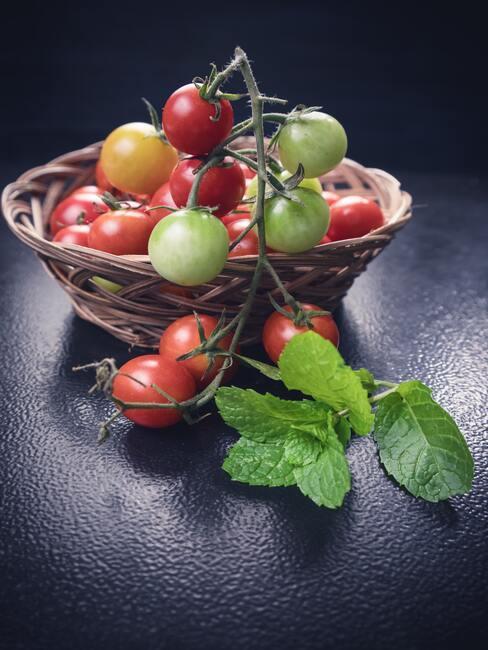 rajčata mini