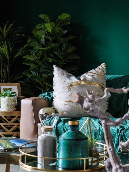 Tmavě zelená barva na zeď obývacího pokoje